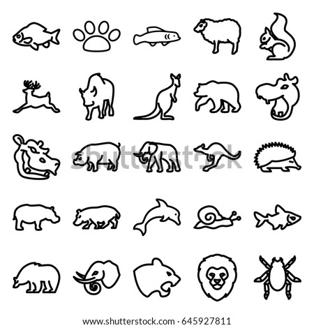 Squirrel Outline Stock Images Royalty Free Images