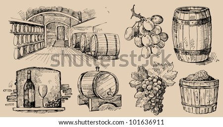 wine collection - stock vector