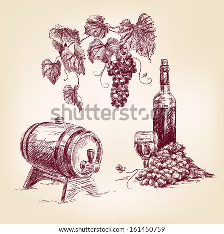 wine collection hand drawn vintage  vector illustration - stock vector