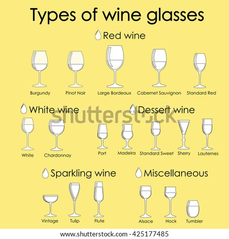 Wine glass set or classification collection isolated on yellow. Vector illustration.Ink liner outline - stock vector