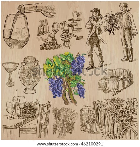 Wine harvest set. Vintage pack. Collection of hand drawn vector illustrations.