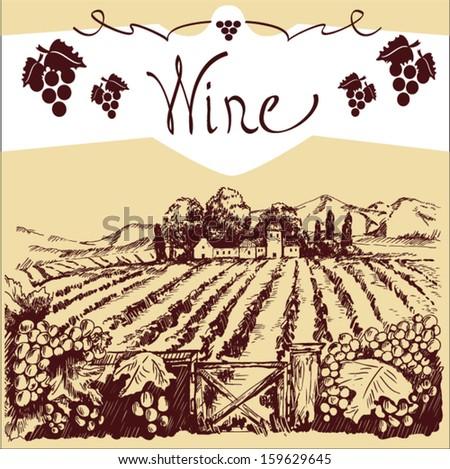 wine label vector - stock vector