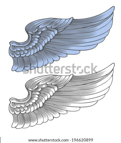 Wing in engraving style.  Vector illustration, isolated, grouped, transparent background - stock vector