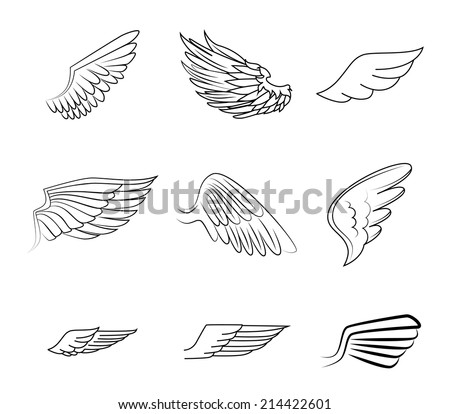 Wings design over white background, vector illustration - stock vector