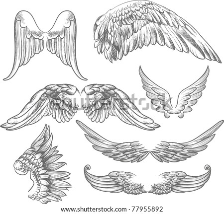 wings label collection - stock vector