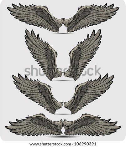 Wings set. Vector illustration. - stock vector