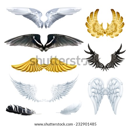 Wings, set vector illustrations - stock vector