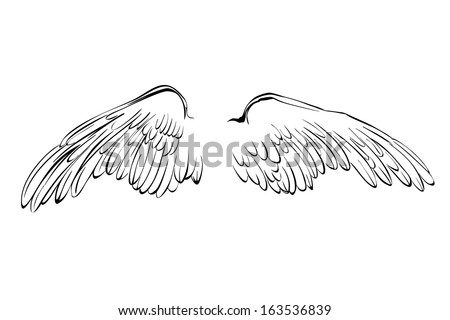 Wings sketch collection cartoon vector illustration  - stock vector