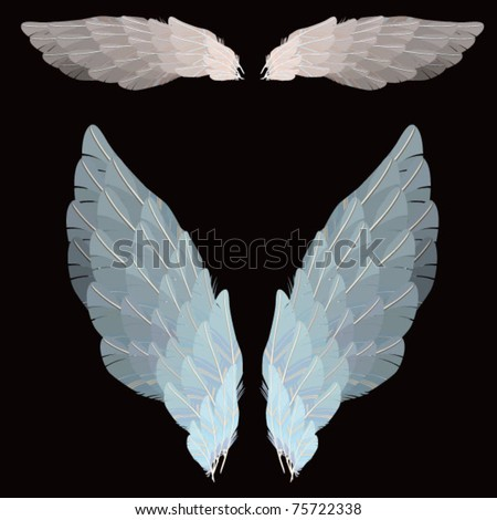 WINGS - VECTOR - ISOLATED - stock vector