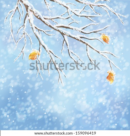 Winter background with snow-covered frozen tree branches, last autumn leaves, snowfall on a blue bokeh backdrop. Snowy weather vector design. Christmas winter landscape greeting card - stock vector