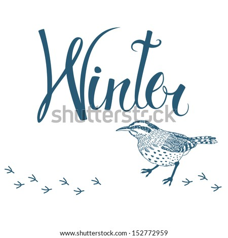 Winter bird card - stock vector