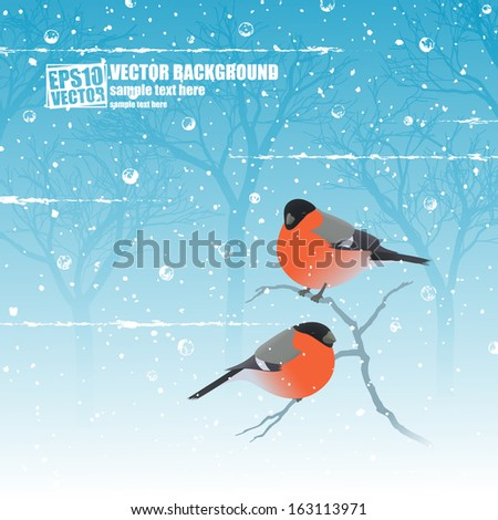 Winter birds - stock vector