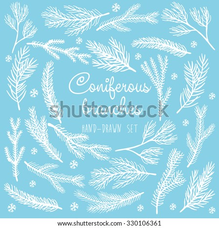 Winter branches vector isolated set  - stock vector