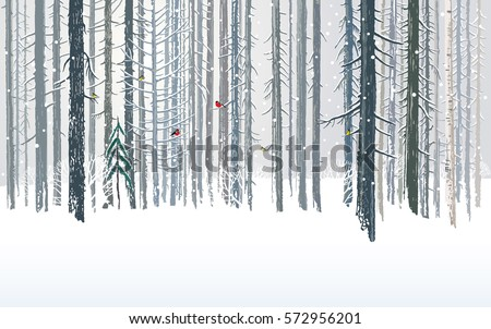 Winter forests background, combined from forest  trees and snow in the landscape.