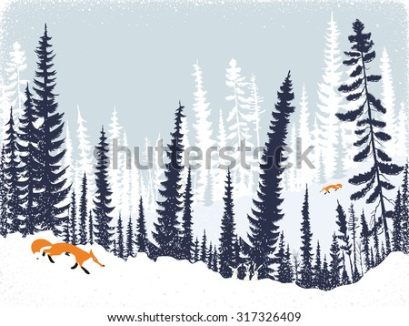 Winter landscape with silhouettes of trees and firs