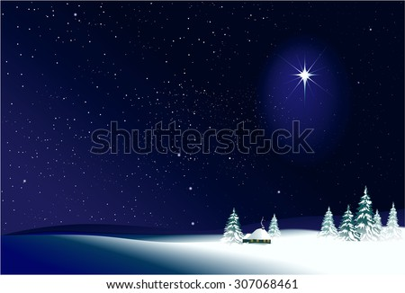 Winter rural  night landscape - stock vector