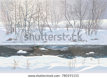 Winter snowy forest landscape with ice river and two ducks, vector illustration.