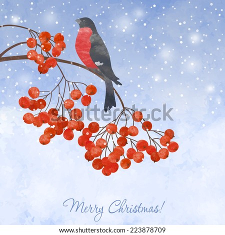 Winter watercolor  card  with bullfinch on a branch of rowan - stock vector