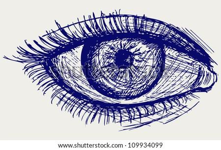 Woman eye. Sketch - stock vector
