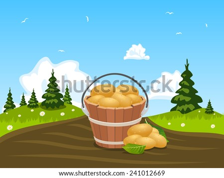 Wood bucket full of harvested potatoes, illustration - stock vector