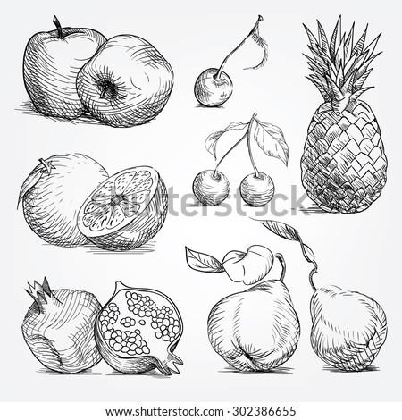 woodcut fruist set,  pineapple, orange, apple, cherry, pear, garnet - stock vector