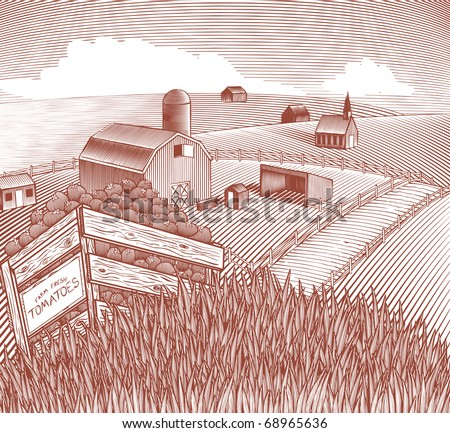 Woodcut style illustration of a crate of tomatoes in a farm landscape. - stock vector