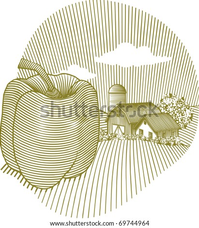 Woodcut style illustration of a pepper in front of a farm landscape. - stock vector