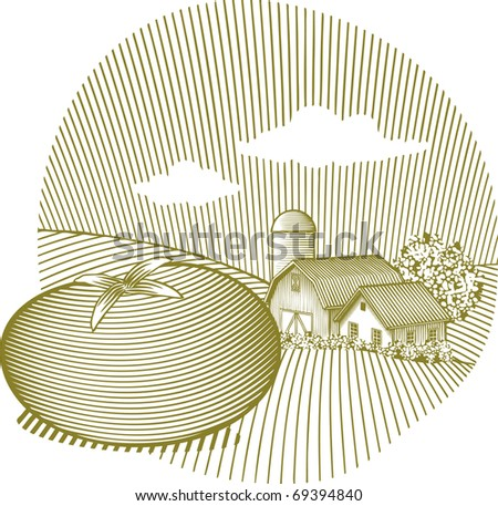 Woodcut style illustration of a tomato sitting in front of a farm scene. - stock vector