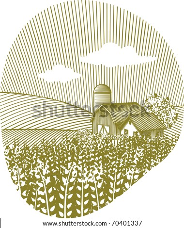 Woodcut style illustration of a wheat field with a barn in the background. - stock vector