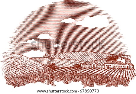Woodcut style illustration of an Italian or Napa Vally style landscape. Note: sky can be removed and clouds can be moved by accessing the hidden layer. - stock vector