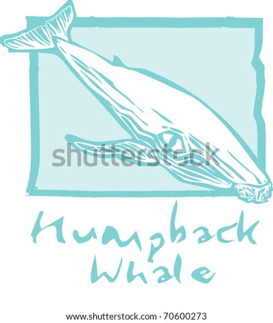 Woodcut vintage style image of a humpback whale. - stock vector