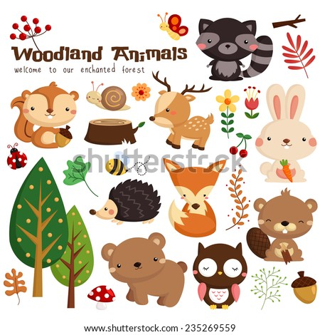 Woodland Animal Vector Set - stock vector