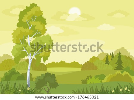 Woodland landscape with birch, fir trees and flowers. Vector - stock vector