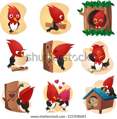 woodpecker cardinal set cartoon illustrations - stock vector