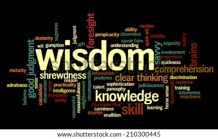 Word cloud containing terms related to wisdom, cleverness, intelligence, reason, shrewdness, skills, talent, wit, resourcefulness, foresight and knowledge.