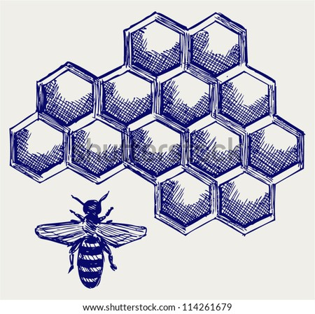 Working bee on honeycells - stock vector
