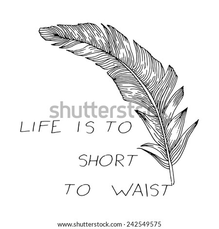 writing feather - stock vector