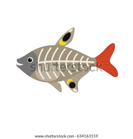 Ray Fish Stock Images Royalty Free Images Amp Vectors