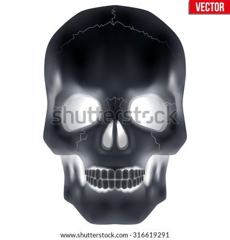 X-ray Human skull. Vector Illustration isolated on white background. - stock vector