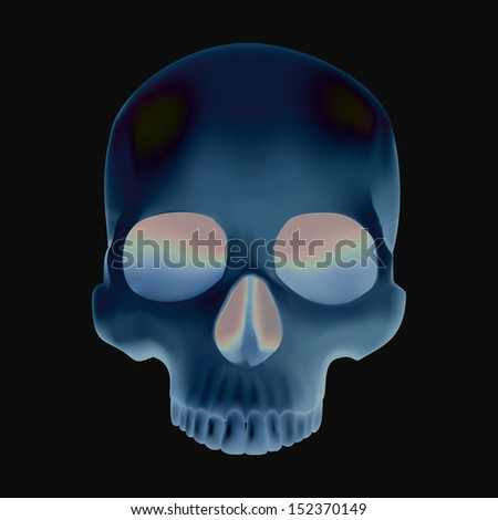 X-ray of skull - stock vector