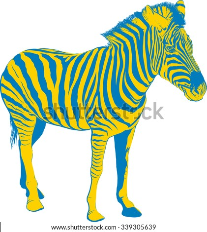 Yellow Blue Zebra in profile on white background - stock vector