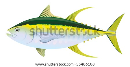 """Yellow fin Tuna (Thunnus albacares) saltwater fish. """"Full compatible. Created with gradients."""" - stock vector"""