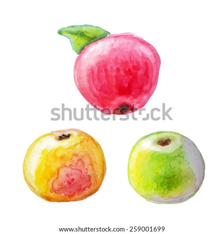 Yellow, green apple and red apple with leaf. Isolated - stock vector