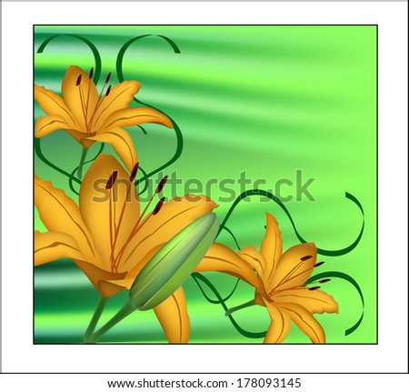 Yellow lily on a green background