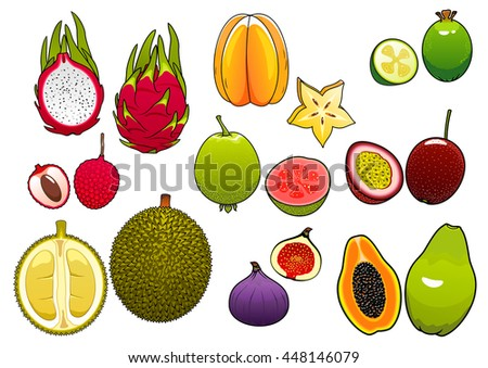 Yellow star fruit and pink litchi, soft and ripe passion fruit and feijoa, fig and papaya, juicy guava, dragon fruit and sweet durian fruits
