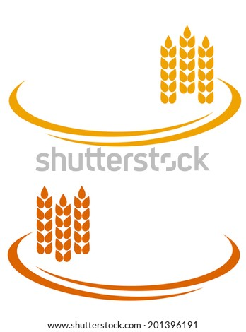 yellow wheat ears with decorative line and place for text - stock vector
