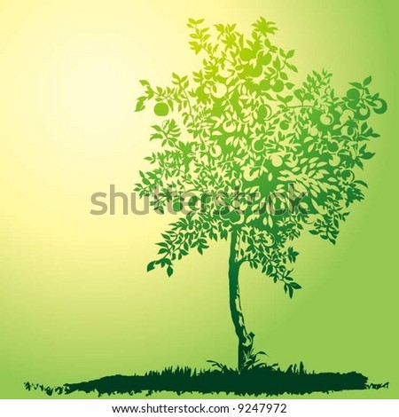 young apple tree - stock vector