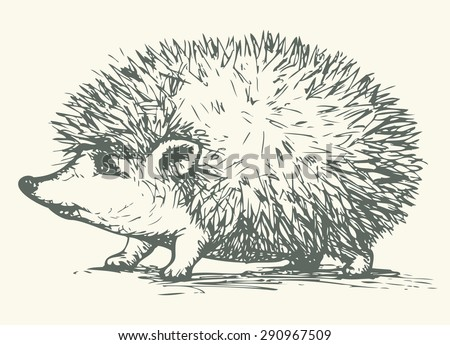 Young cute cheerful hedgehog with sharp prickly needles. Vector monochrome freehand linear ink drawn backdrop sketchy in art antique style pen on paper. Side close-up view with space for text - stock vector
