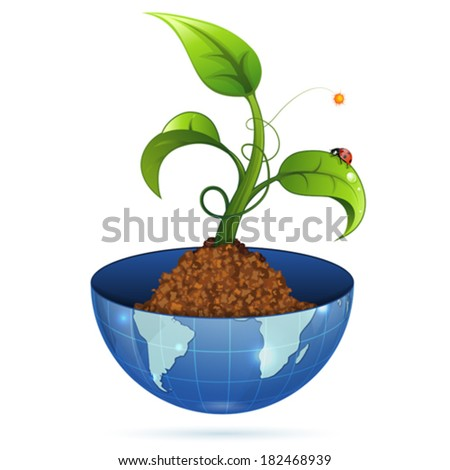 Young Green Sprout from the Earth with Water Drops and Ladybug, vector illustration