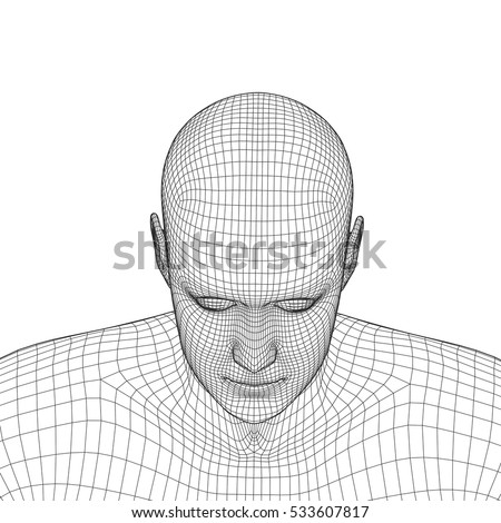 Young Man Face Portrait 3 D Wireframe Stock Vector 533607817 ...